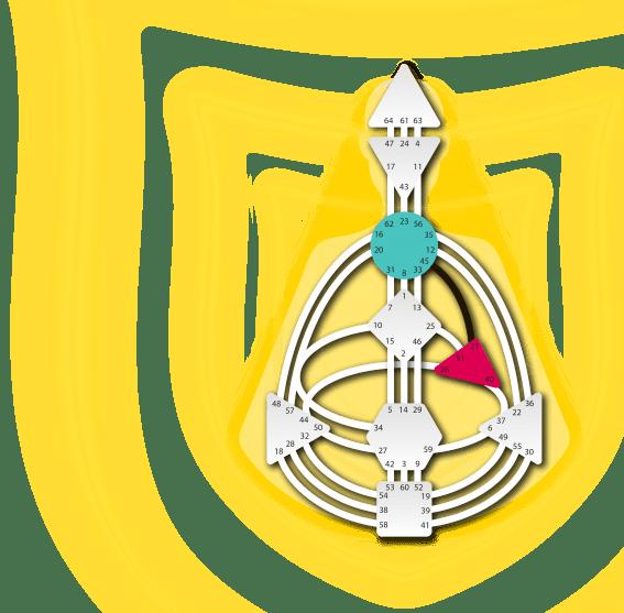 Манифестор Дизайн Человека